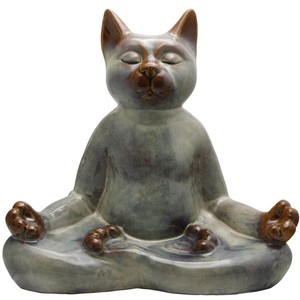 Mediterene katt