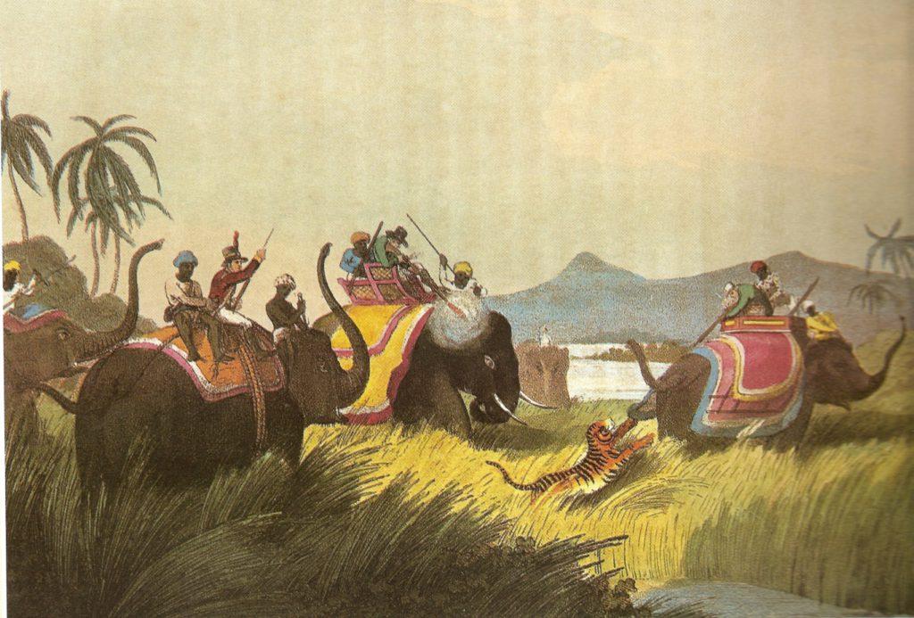 ElephantbackTigerHunt